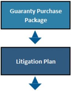guaranty purchase package and litigation plan